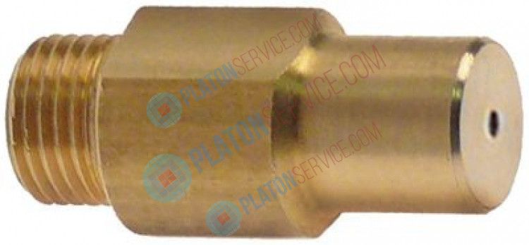 gas injector thread M10x1 WS 11 bore ø 2,15mm L 30mm