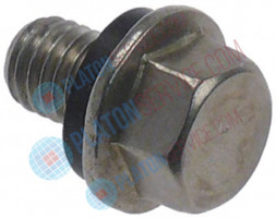 safety screw thread M8x1.25 L 20mm thread L 12mm head ø 17mm WS 12 A2 with gasket for boiler